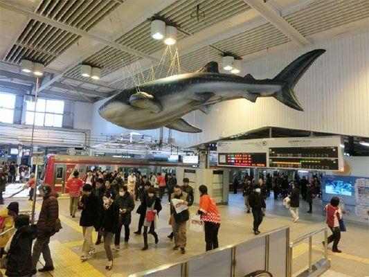 Large 20150114 okinawa2