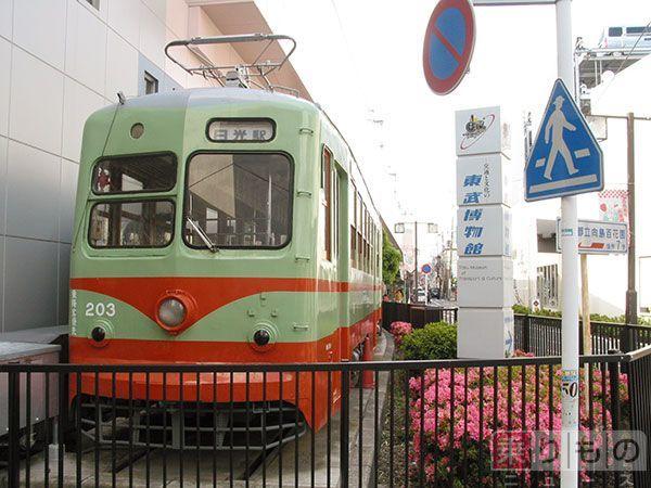 Large 20150225 nikko 01