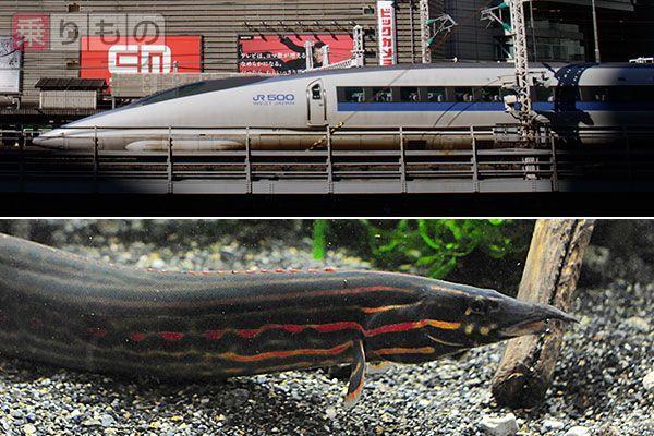 Large 150707 kyotosuizokukan 01