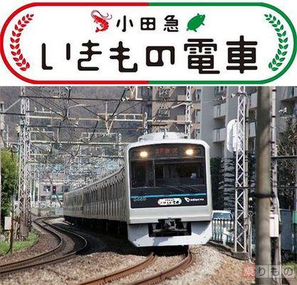 Large 160725 odakyuikimono 02