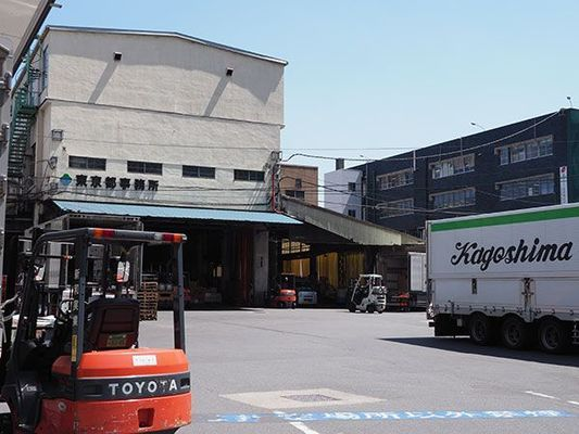 Large 180516 tsukiji 09