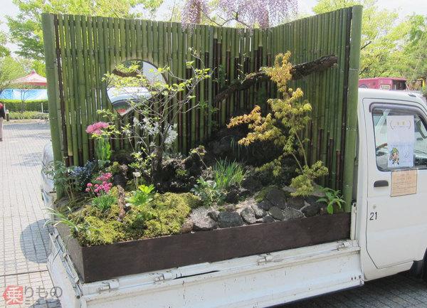 Large 180709 garden 01