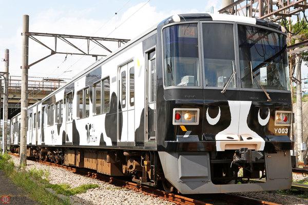 Large 181010 ushi 01