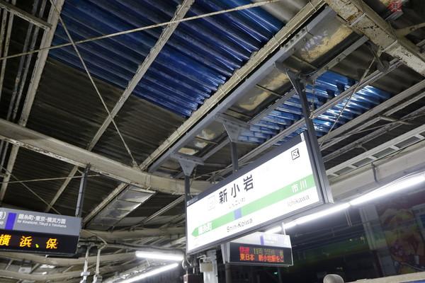 Large 181208 shinkoiwa 02