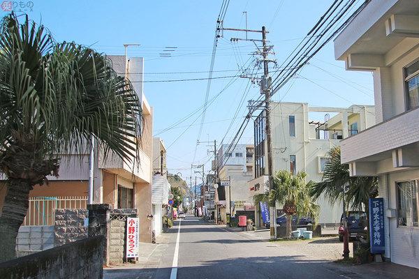 Large 200214 shibushi 07