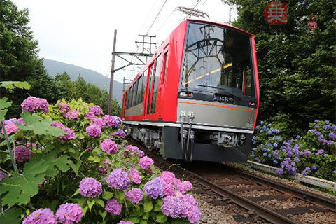 Large 200624 hknsaikai 01
