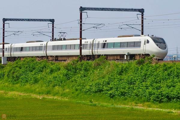 Large 200707 fukui 01