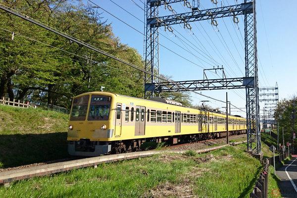 Large 201203 tamagawa 01