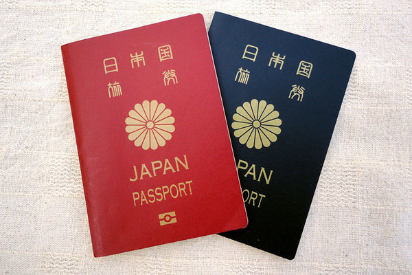 Large 210125 passport 01