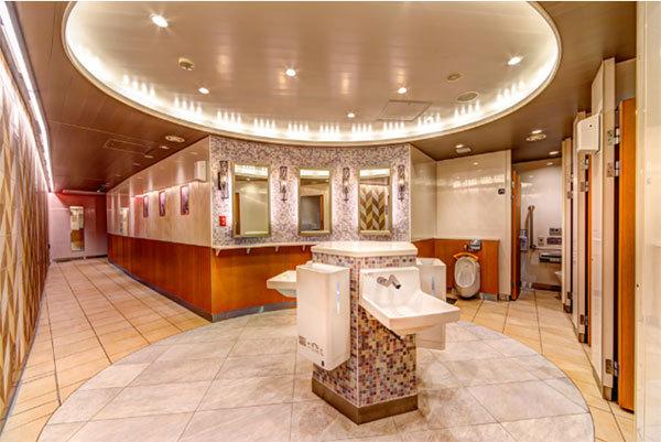 Large 210128 toilet 01