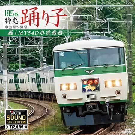 Large 210201 vicom185cd 01