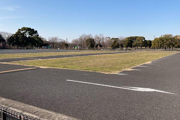 Large 210301 park 01