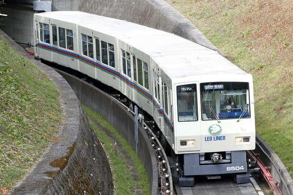 Large 210330 sochoku 01