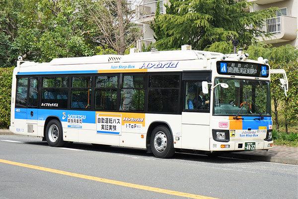 Large 210412 sakonyama 01