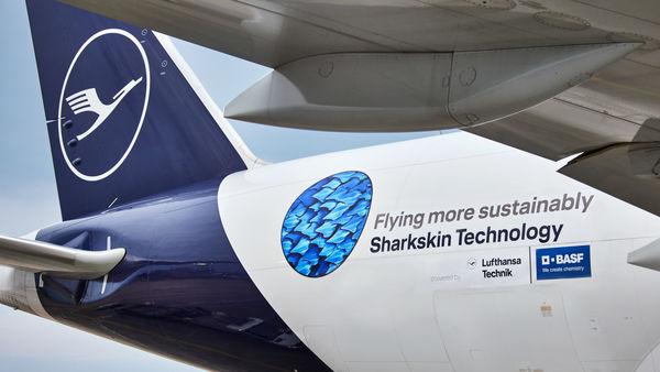 Large 210515 shark 01