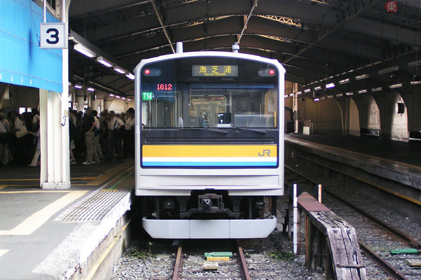 Large 210618 tsurumi 01