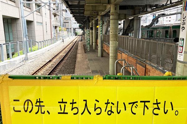Large 210624 saikyo 01